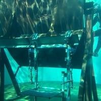 Estrutura para Testes em Verdadeira Grandeza - Serviços de Mergulho Belov