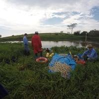 Inspeção travessia Rio Jacaré Guaçu 1 - SP - Serviços Hidrográficos Belov